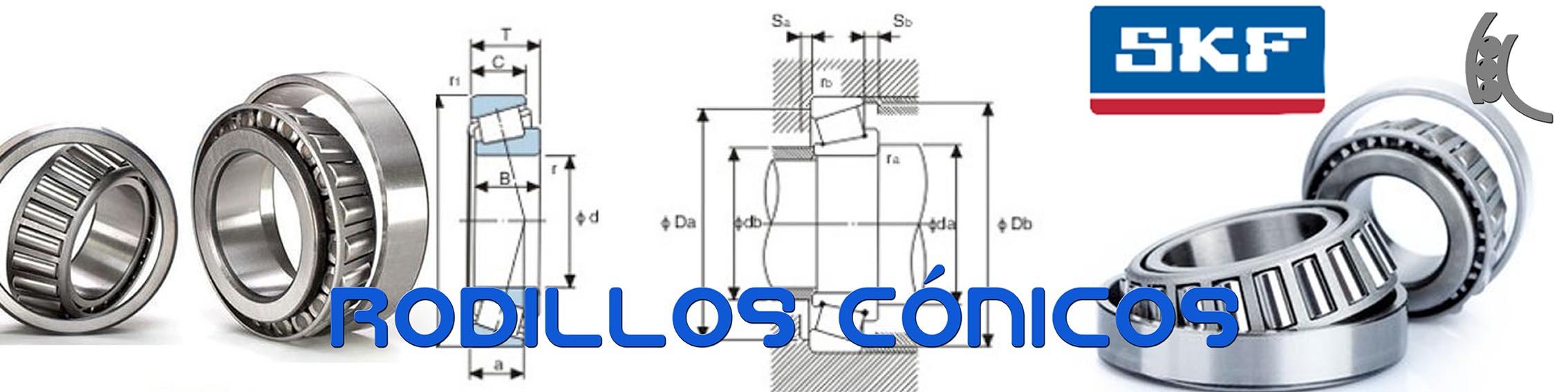 rodillos conicos 2.jpg